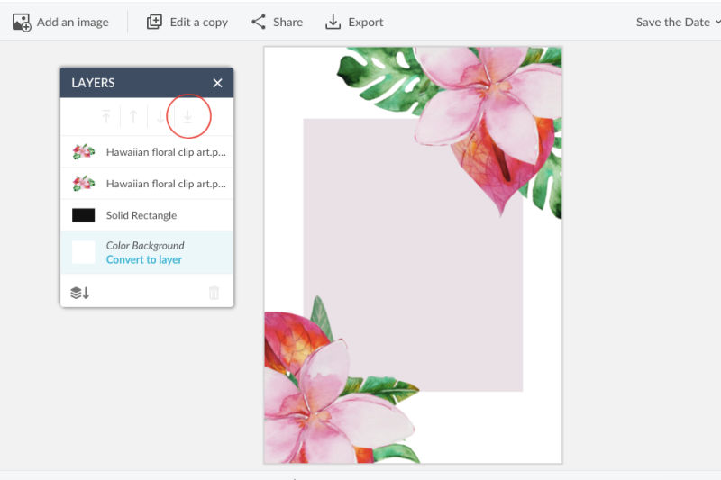 Create floral cheap save the dates using Picmonkey 10